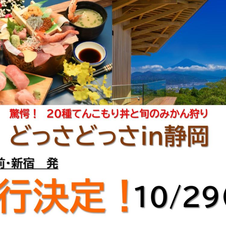 10/29(金)発 どっさどっさ㏌静岡(明大前・新宿) バスツアー出発決定🐟
