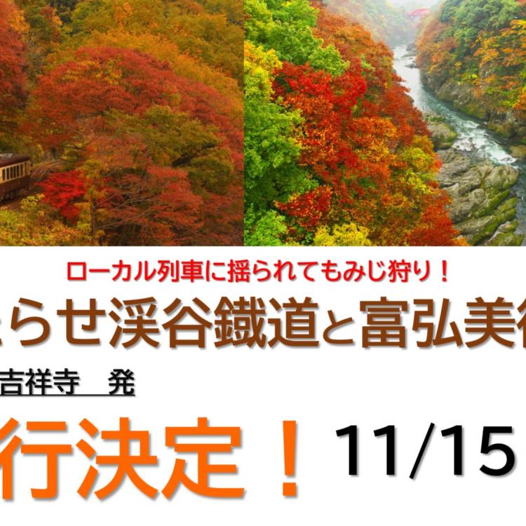 続・催行決定!! 11/15(月)発日帰りバスツアー <紅葉を見にいこうよう編>